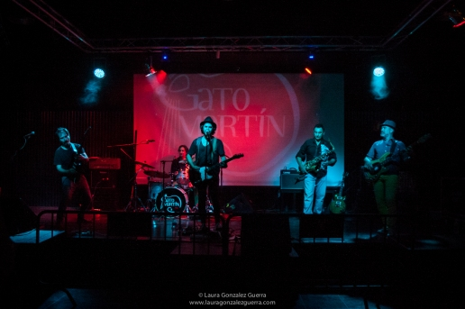 Gato Martín Band 1007 16 lgg_0175