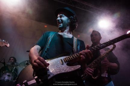 Gato Martín Band 1007 16 lgg_0325