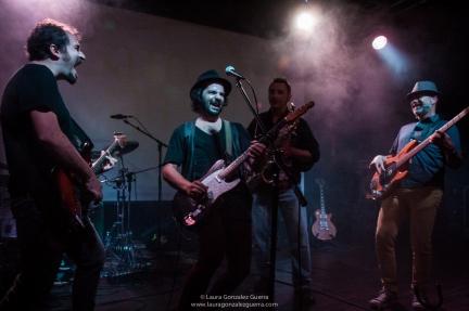 Gato Martín Band 1007 16 lgg_0327
