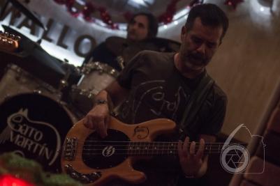 gato-martin-hard-rock-05